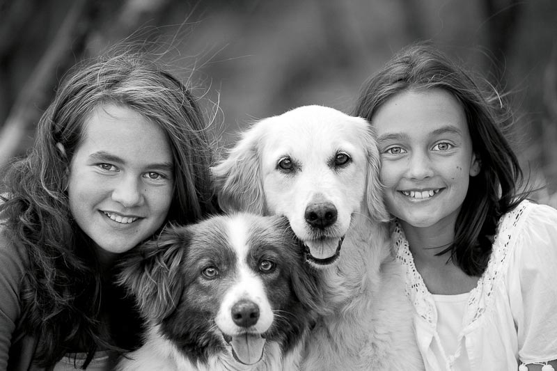 dogs and their families photographer craig holmes is a family portrait photography
